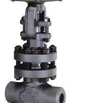 Bonney Forge forged steel valves